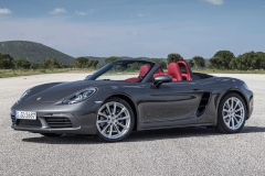 Porsche-Boxster-car-cover